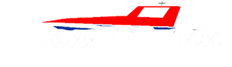 Bensemann Logo